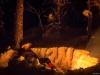 Nyter livet ved bålet